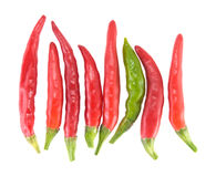 Red and green chili pepper Royalty Free Stock Images