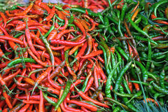 Red and green chili pepper. (Capsicum frutescens Royalty Free Stock Photo