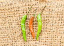 Red and green chili pepper on a sackcloth Stock Photo