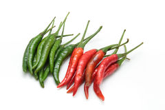 Red and green chili pepper Stock Photos