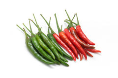 Red and green chili pepper Royalty Free Stock Image