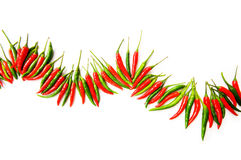 Red and green chili peppers Stock Image