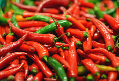 Red and green chili peppers at the background Royalty Free Stock Image