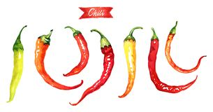 Red and green chili peppers isolated on white watercolor illustration Stock Photo