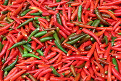 The red and green chili peppers on the market. Stock Image
