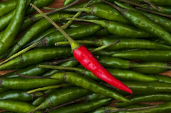 Red and green chili peppers Royalty Free Stock Photos