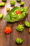 Red and green chili peppers in vertical format Royalty Free Stock Photos