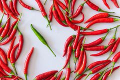 Red and green chili peppers on white background, Health concept.  Royalty Free Stock Photos