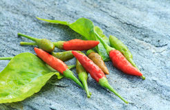 Red and green chili. On stone background Stock Photo