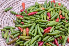 Red and green chilli pepper on basket background. stock images