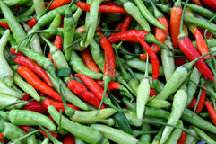 Red and Green Chilli Peppers Royalty Free Stock Photo