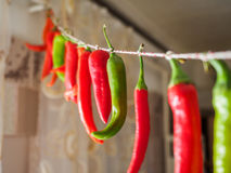 Red and green chilli peppers hanging on a rope. Royalty Free Stock Image