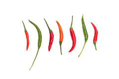 Red and green chilli peppers on white background Stock Photography