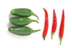 Red and green chilli Stock Photography