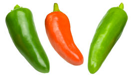 Red , green chillies. Image of a red and green chillie peppers isolated on a white background Royalty Free Stock Photo