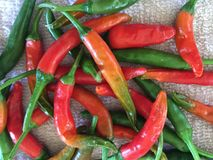 Red & Green Chillies. Hot fresh red and green chillies Royalty Free Stock Photos