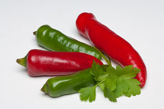 Red and Green Chillies with Parsley and Basil. On a plain background Stock Images