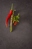 Red and green chilly pepper on a gray background Royalty Free Stock Images