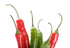 Red and green  chilly peppers  on white background Royalty Free Stock Image