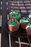 Red and green chocolate chip cupcake Royalty Free Stock Image