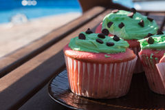 Red and green chocolate chip cupcake Stock Photos