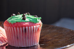 Red and green chocolate chip cupcake Royalty Free Stock Photos