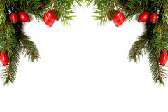 Red-green christmas arragement Stock Image