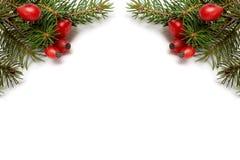 Red-green christmas arragement Stock Photos