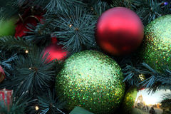 Red and green christmas decorations hanging on christmas tree Stock Image