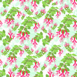 Red Green Flower Seamless Pattern Vector Stock Image