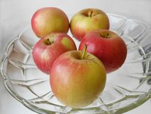 Red-green fresh apples with drops of water on the light background on the transparent plate. stock images