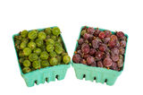 Red and green gooseberries Stock Photos