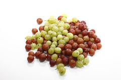 Red and green gooseberries Royalty Free Stock Image