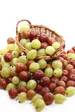 Red and green gooseberries in basket Royalty Free Stock Images