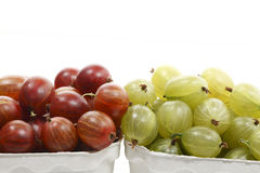 Red and green gooseberries in cardboard boxes Royalty Free Stock Images