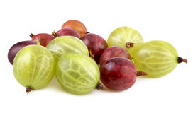 Red green gooseberries Royalty Free Stock Image