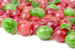 Red and green gooseberries with leaves isolated on white background Royalty Free Stock Photos