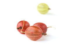 Red and green gooseberry  Royalty Free Stock Photos