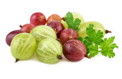 Red green gooseberry on white royalty free stock photo