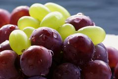 Red and green grapes Stock Photography