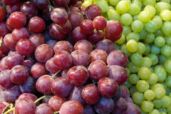 Red and Green Grapes Closeup Stock Images