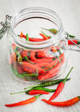 Red and green hot chili pepper Royalty Free Stock Photography