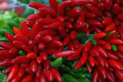 Red and green hot chili peppers close up Stock Images