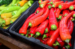 Red and green hot chillies Stock Photo