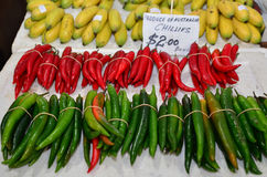 Red and green hot chillies Stock Photography