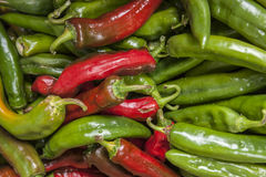 Red and green jalapeno peppers. Royalty Free Stock Photos