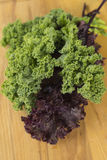 Red and green kale. Delicious vegetable that this kale red or green and filled with vitamins. One can make smoothies, or green juice or put it in our soups Royalty Free Stock Photography