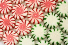 Red and green mints Royalty Free Stock Images