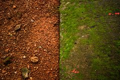 Red & green Natural footpath texture background. Red & green Natural footpath texture contrast background royalty free stock photo