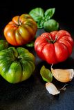Red, green and orange tomatoes with fresh garlic. Red, green and orange tomatoes glistening with water droplets on a dark reflective surface with fresh garlic Royalty Free Stock Photography